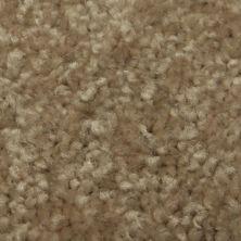 Richmond Carpet Regal Supreme Barn Wood RIC3177RESU