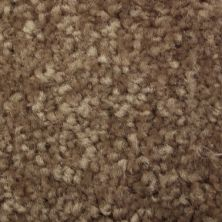Richmond Carpet Satin Supreme Scented Beige RIC3178SASU