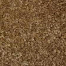 Richmond Carpet Noble Elegance Sepia Tan RIC4378NOEL