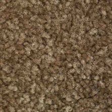 Richmond Carpet Noble Classic Honey Comb RIC4379NOCL