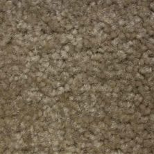 Richmond Carpet Noble Classic Antique RIC4381NOCL