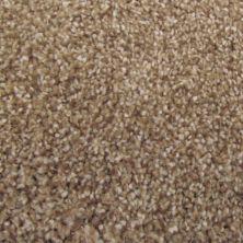 Richmond Carpet Soft Decadence Swiss Almond RIC4807SODE