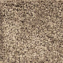 Richmond Carpet Opulent II Walnut Grove RIC4838OPUL