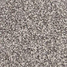 Richmond Carpet Barony Supreme Earth Stone RIC4877BASU