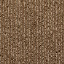 Richmond Carpet Pinstripe Country Path RIC5309PINS