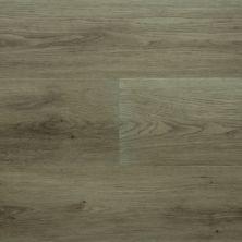 Richmond Luxury Vinyl Firmfit Premium Plank 7 RVI1633FIRMFITP7