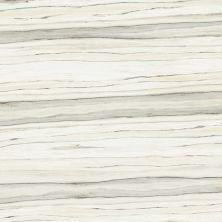 "Casa Roma ® Zebrino Calacatta (12""x24"" Matte) STOUSG1224186"