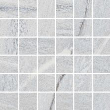 Casa Roma ® Urban 2.0 Iron Blue (12×12 Mosaic Honed Rectified) STOUSG12MO227