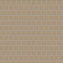 "Casa Roma ® Simply Modern Tan (1""x1"" Mosaic) STOUSG12MS164"