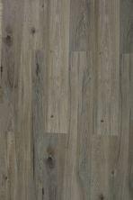 Great Floors Exclusive Aqua Logic Greyhawk AQUALOGIC-142204