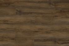 Great Floors Exclusive Performacore Wide Hazelwood WIWP0101