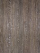 Great Floors Exclusive XL-Lence Oyster XLLENCE-GF5004