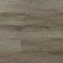 Dolphin Carpet & Tile Akua WPC Platinum EPAKUPLA5.5MM