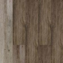 Dolphin Carpet & Tile Atelier Taupe HAATETAU9X48