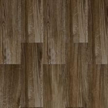 Dolphin Carpet & Tile Baltimore Taupe HABALTAU9X26