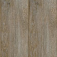 Dolphin Carpet & Tile Cipres Light Grey WPCIPLIG8X48