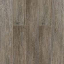 Dolphin Carpet & Tile Cipres Grey WPCIPGRE8X48