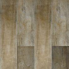 Dolphin Carpet & Tile Etna Almond PAETNALM9X36