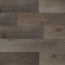 Dolphin Carpet & Tile Phoenix SPC Ash EPPHOASH4MM