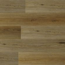 Dolphin Carpet & Tile Phoenix SPC Valley EPPHOVAL4MM