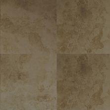 Dolphin Carpet & Tile Teide Hueso CETEIHUE18