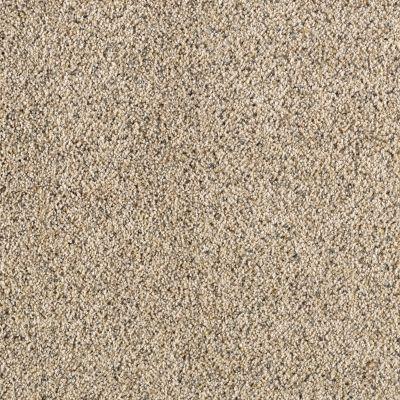 Carpeting Karastan Remarkable Beauty Coastal Beige