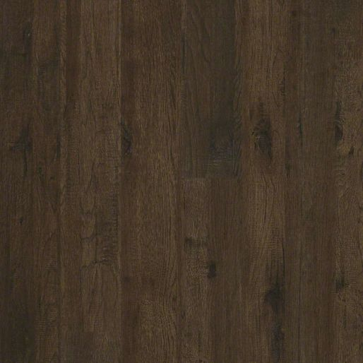 Shaw Provencial Riverview Hickory Chaplin Hickory