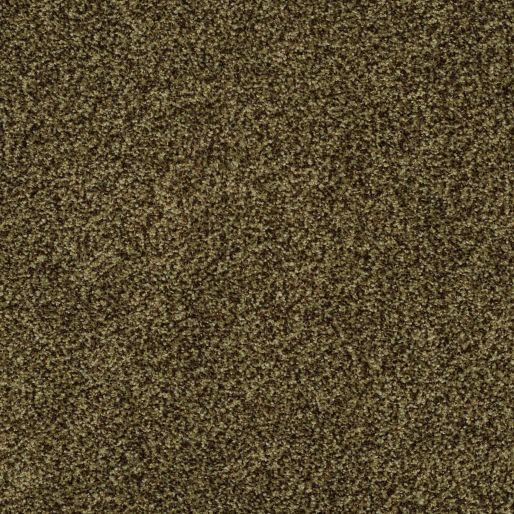 Coronado Bay – Scotch Pine