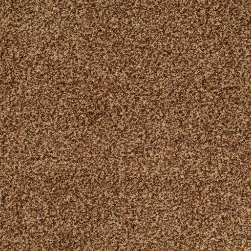 Montage – Cocoa Pecan