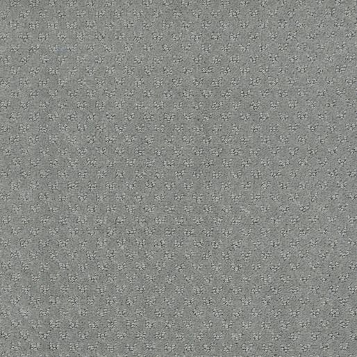 Mar Vista – Eucalyptus