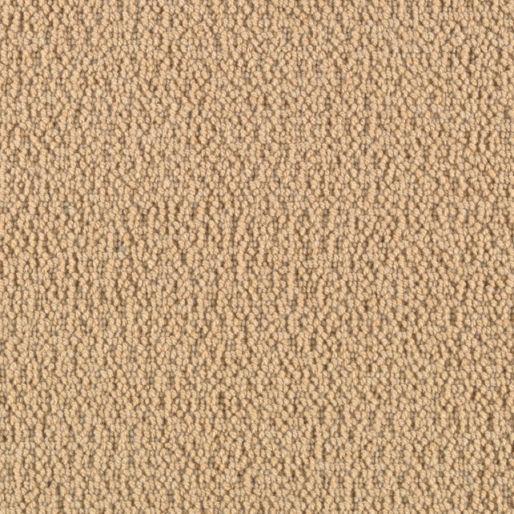 Cobble Shore – Sunlit Sand