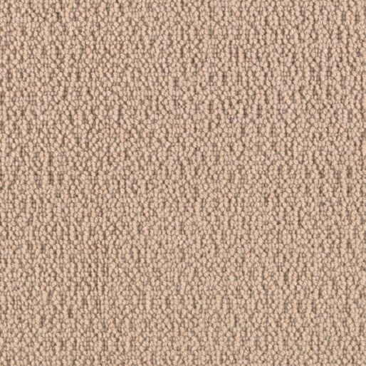 Cobble Shore – Sand Dollar