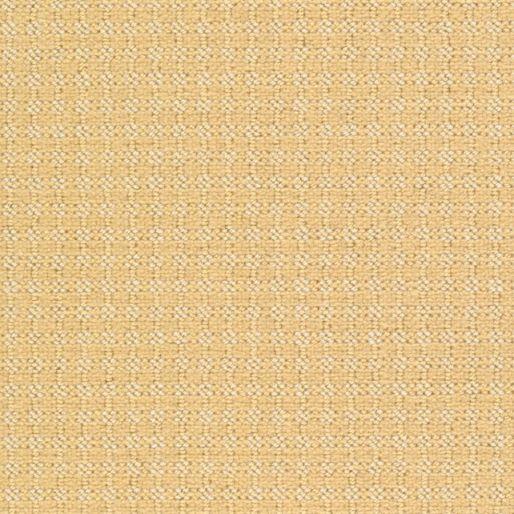 Pointelle – Saffron