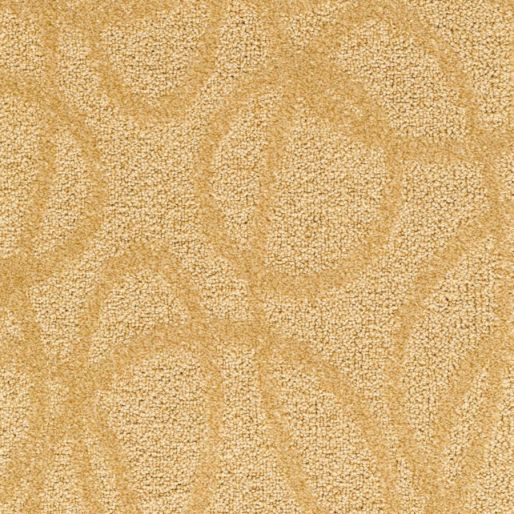 Modern Aesthetic – Golden Glam