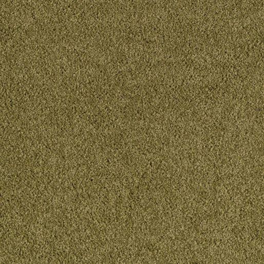 Risque – Opulent Olive