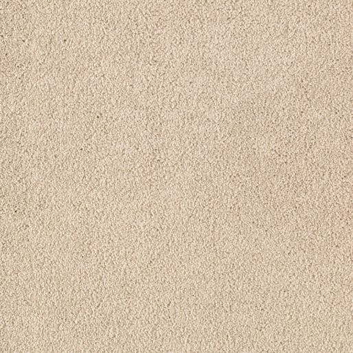 Somerset Cove – Coastal Beige