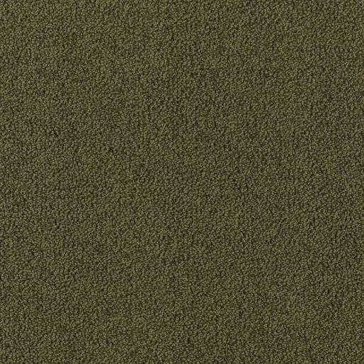 Modern Always – Olive Branch