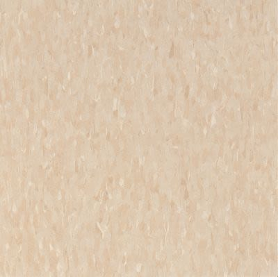 Armstrong Standard Excelon Imperial Texture Diamond 10 Tech Brushed Sand Z1873031