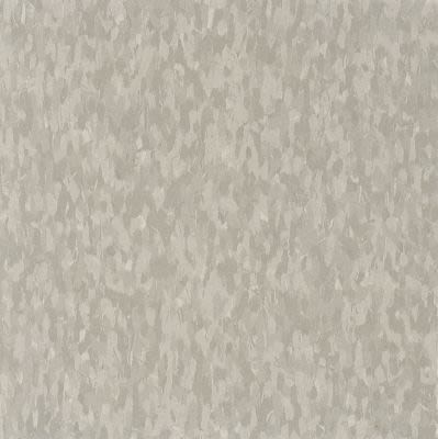 Armstrong Standard Excelon Imperial Texture Dusty Miller 51883031