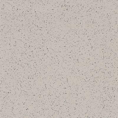 Armstrong Premium Excelon Stonetex Pebble Gray 52122031