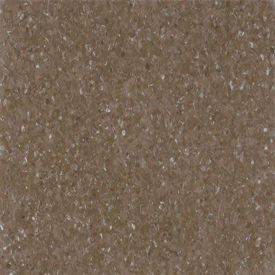Armstrong Premium Excelon Chromaspin Durer Brown 54813031