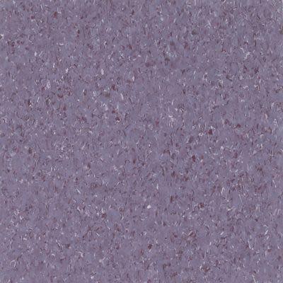 Armstrong Premium Excelon Chromaspin Neodymium 54824031