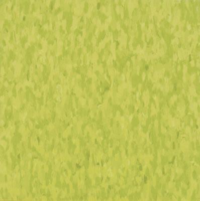 Armstrong Standard Excelon Imperial Texture Kickin' Kiwi 57510031