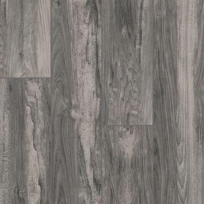 Armstrong Alterna Plank Established Goodness Craftsman Steel D0002651