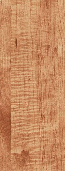 Armstrong Exotics Tiger Maple L6535N8E