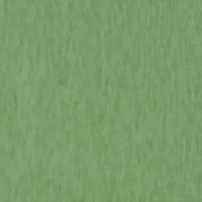 Armstrong Migrations Bbt Green Grass T3527031