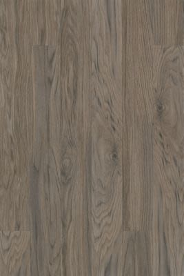 Armstrong Natural Creations Classics Driftwood Gray TP038491