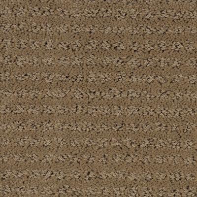 Stainmaster Petprotect Stainmaster – Petprotect SIMPLE ELEGANCE Bistre Grey 1661-74299