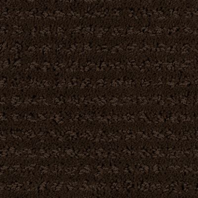 Stainmaster Petprotect Stainmaster – Petprotect SIMPLE ELEGANCE Docker Brown 1661-76797