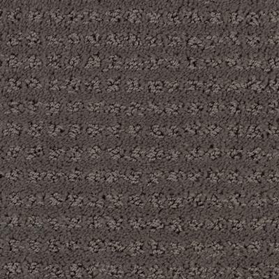 Stainmaster Petprotect Stainmaster – Petprotect SIMPLE ELEGANCE Metallic Grey 1661-89056